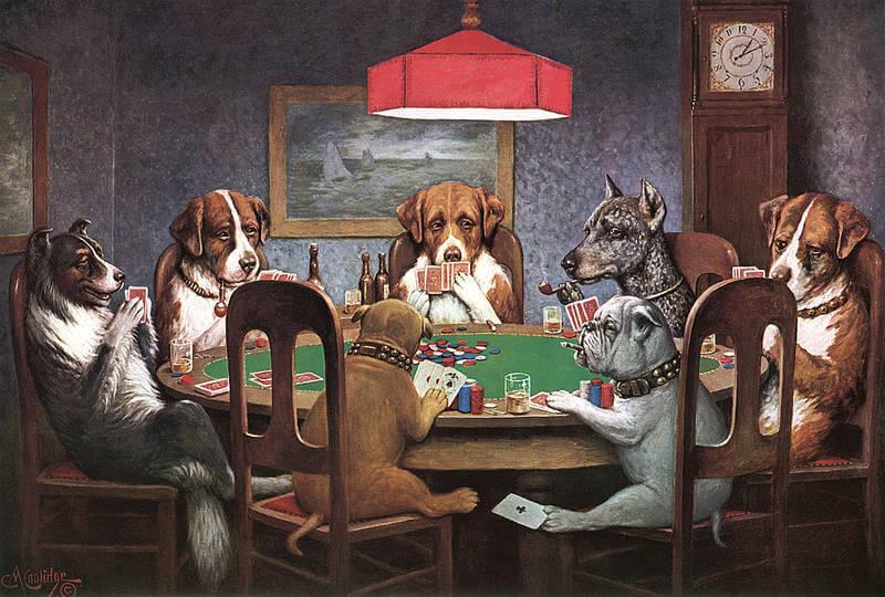 Poker Dog - Yebo Casino