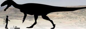 diagram of estimated size of new dinosaur found in SA